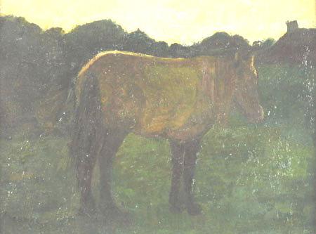 Rhinopneumonie in Aerdenhout