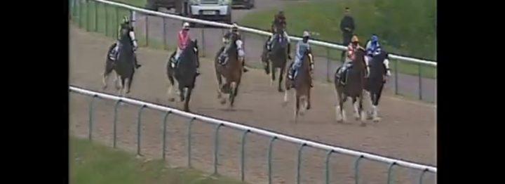 FILMPJE: race met Shire paarden