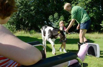 Kinderboerderijen in juni in actie voor eigen spaardoel