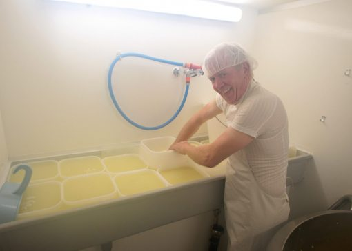Kaas maken op de boerderij