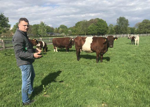Van hobbyboer naar professioneel boer: de tijd is er rijp voor