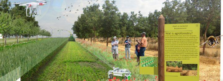 Boeren met dieren en planten door elkaar: agroforestry