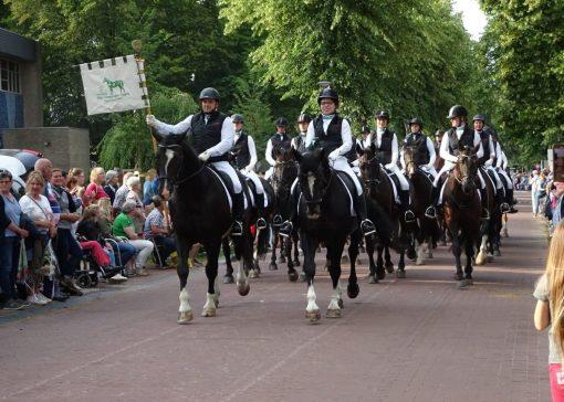 Hét jaar van het Groninger paard