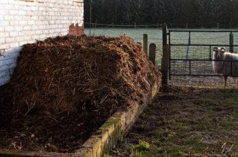 Maak waardevolle compost van de mest van je dieren